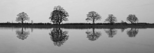Shows trees reflected in a still lake.