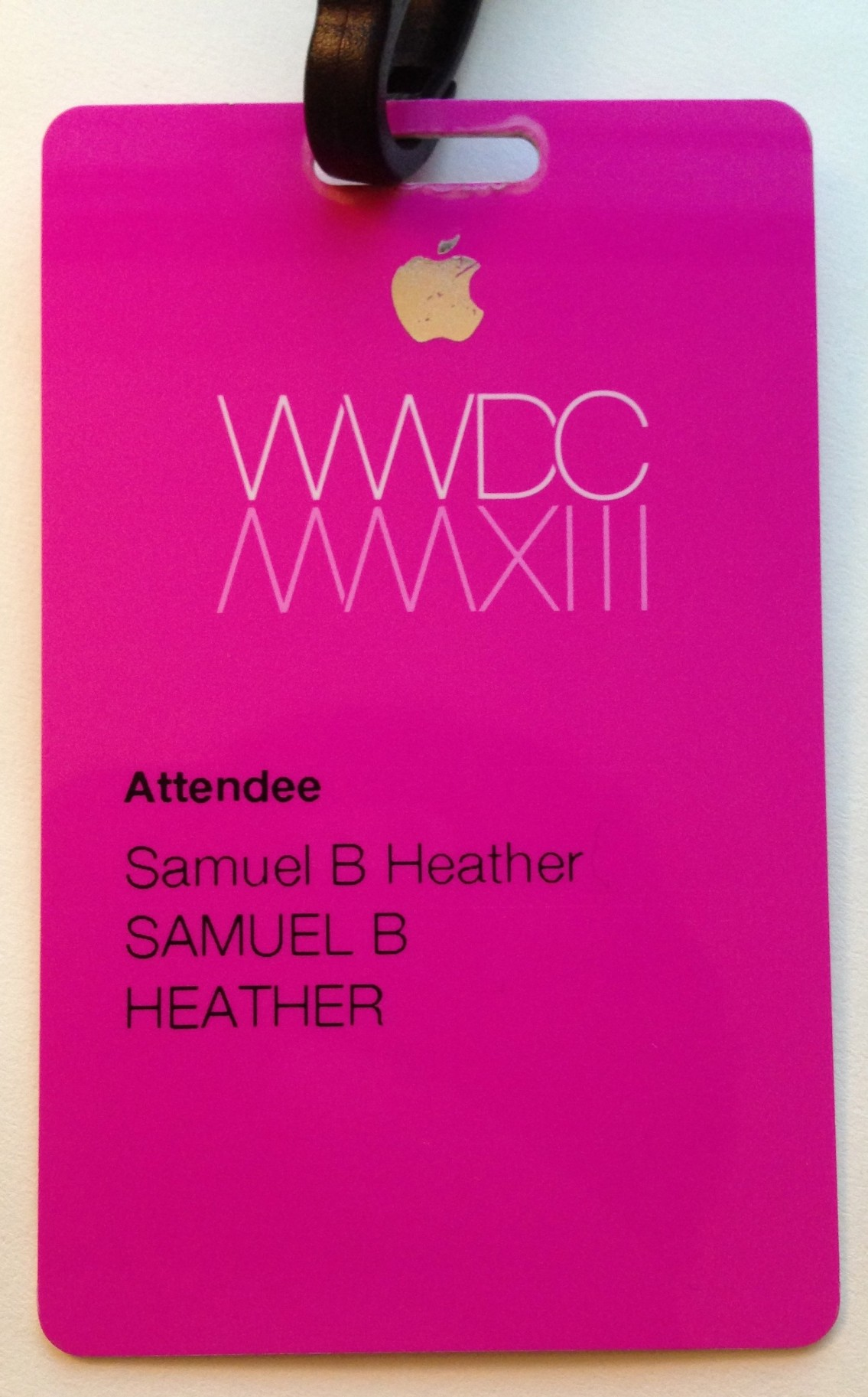 WWDC 2013 Badge