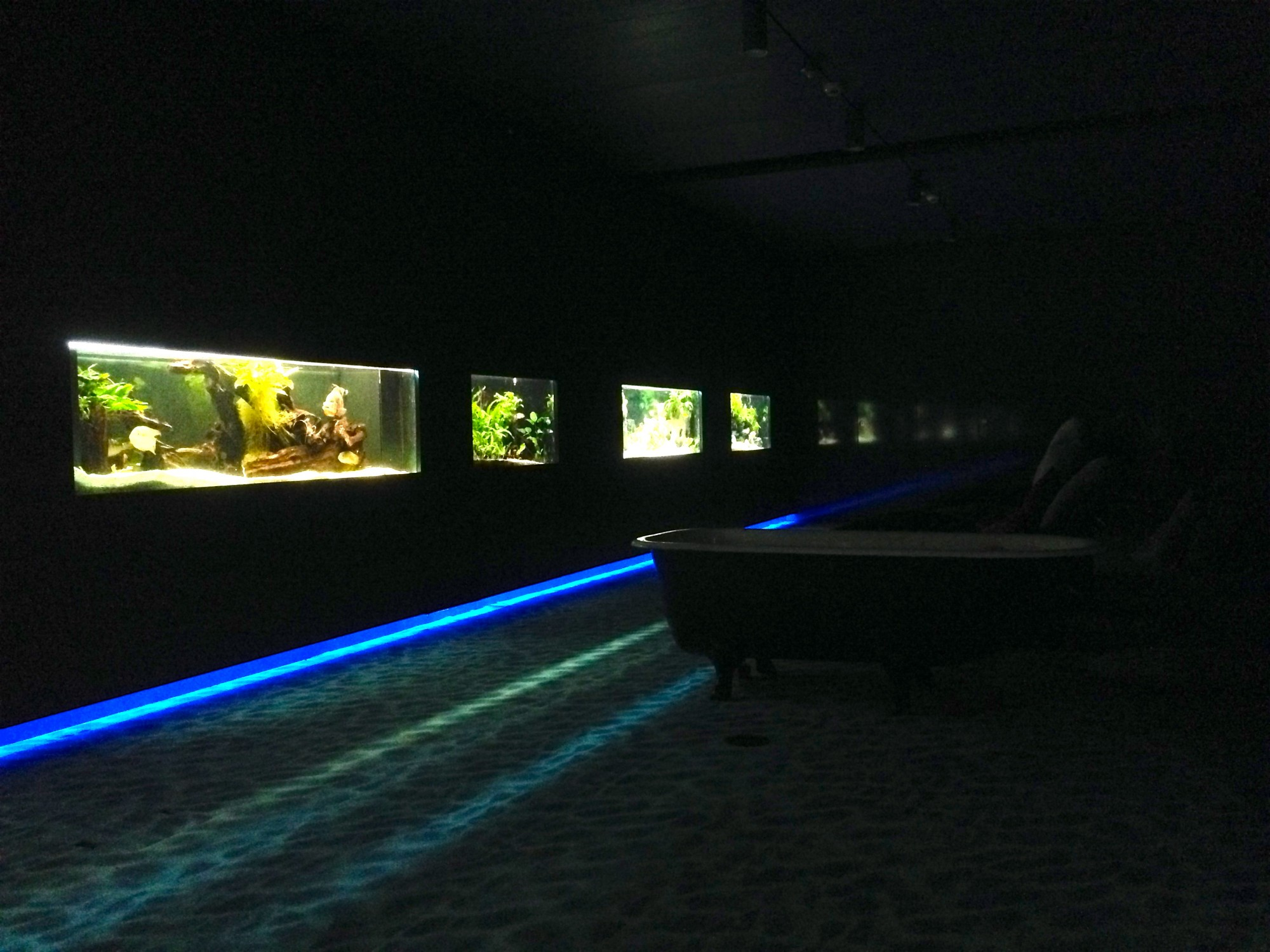 Water Lounge, Google Zurich - shows dark room with couches and fish tanks.